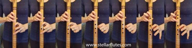 The Celtic Scale www.stellarflutes.com