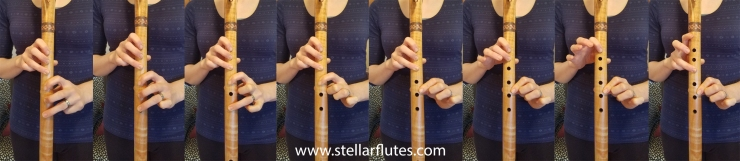 The Major Scale - Method 1 www.stellarflutes.com